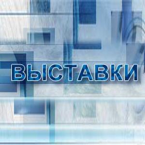 Выставки Сонково